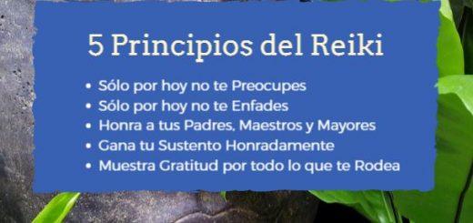 5 principios basicos del reiki